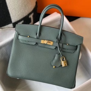 Hermes Birkin 25cm Bag In Vert Amande Clemence Leather
